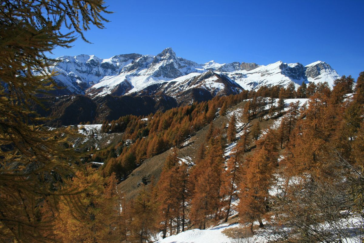 Il_Foliage_in_Valle_Maira_-_3.jpg